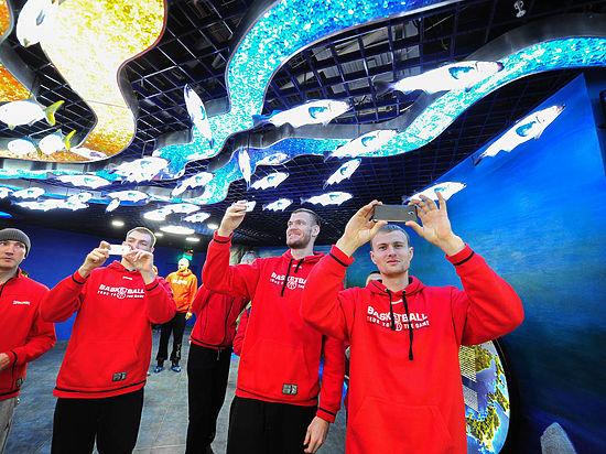 Приморский океанариум открыл двери для первых посетителей