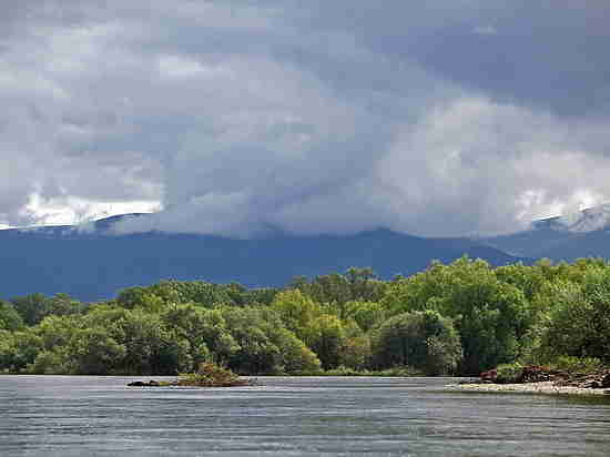 Приморье борется за благоприятную окружающую среду
